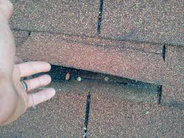 roofing inspection nicholasville ky