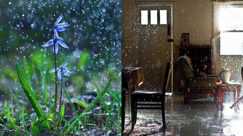 rain destroys homes lexington ky