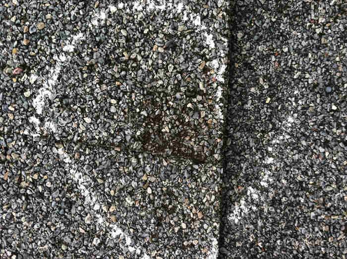 subtle hail strikes on shingle nicholasville ky