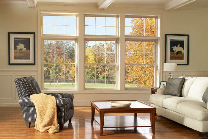 living room windows