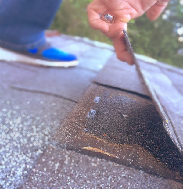 shingle tab loose from wind damage 3-10-17