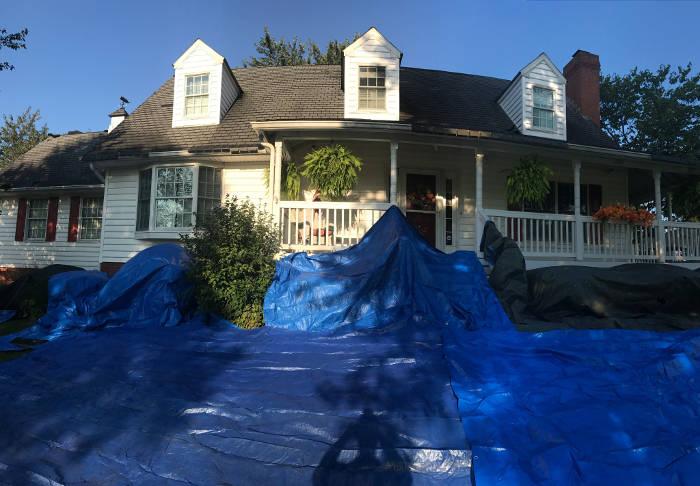 using tarp in yard to catch fallen debris 9-25-17