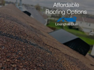 2 Affordable Options For A New Roof On Your Home In Lexington, KY